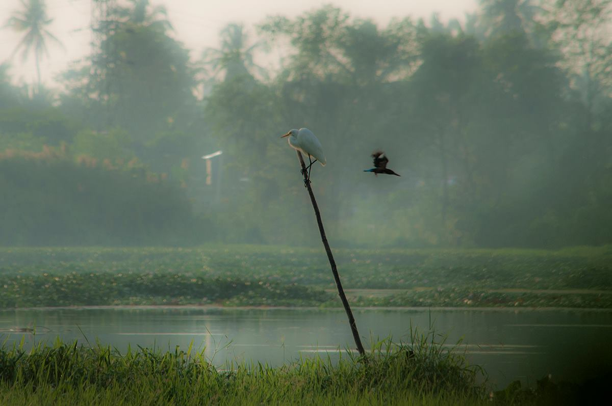 Photographer: Sulakkhana Chamara