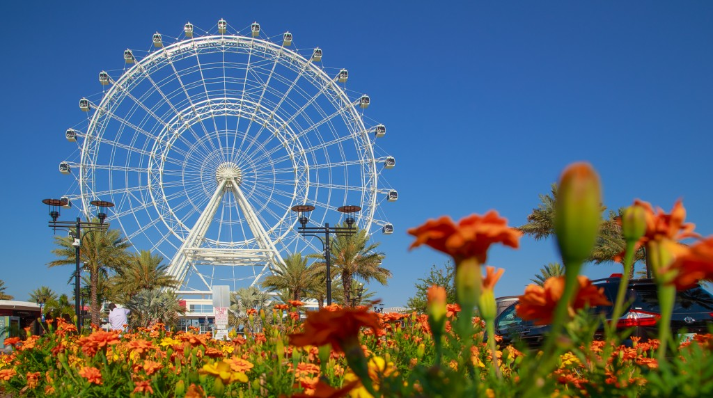 The Orlando Eye photographed in an interesting angle by Chathura Jayasinghe.